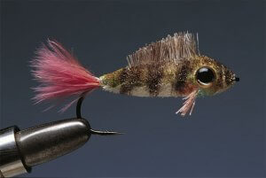 Get Knotted: An Early History of Fly Tying