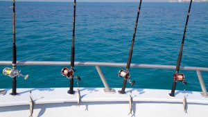 Top Tips For First-Time Charter Fishing